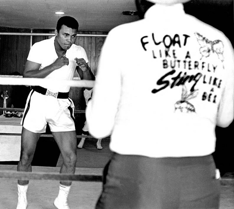 Harry Benson ,   Ali, Float Like a Butterfly, Miami, Edition of 35  ,  1964     archival pigment print ,  24 x 30 in. (61 x 76.2 cm)     HB120103
