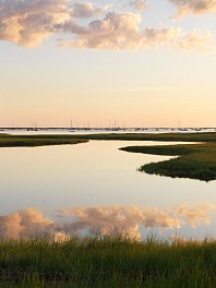 Past Exhibitions: NATHAN COE: Photography Exhibition [Nantucket, MA] Aug 10 - Aug 18, 2015