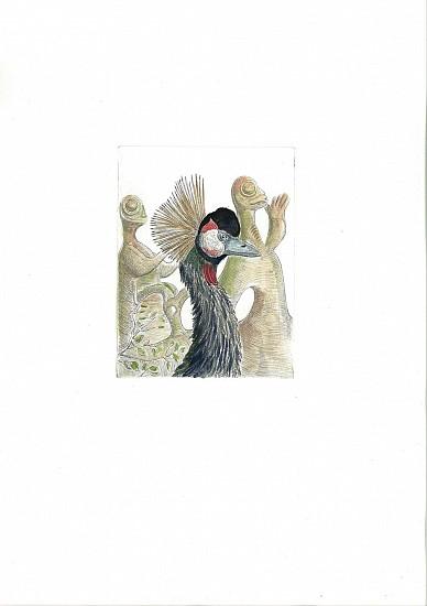 Bjorn Skaarup, Black Crowned Crane, Nigeria 2016, Color engraved etching