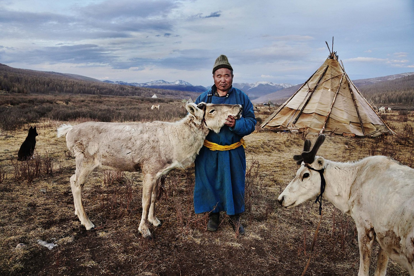 Steve McCurry ,   Mongolia - 10033  ,  2018     FujiFlex Crystal Archive Print ,  30 x 40 in. (76.2 x 101.6 cm)     10033