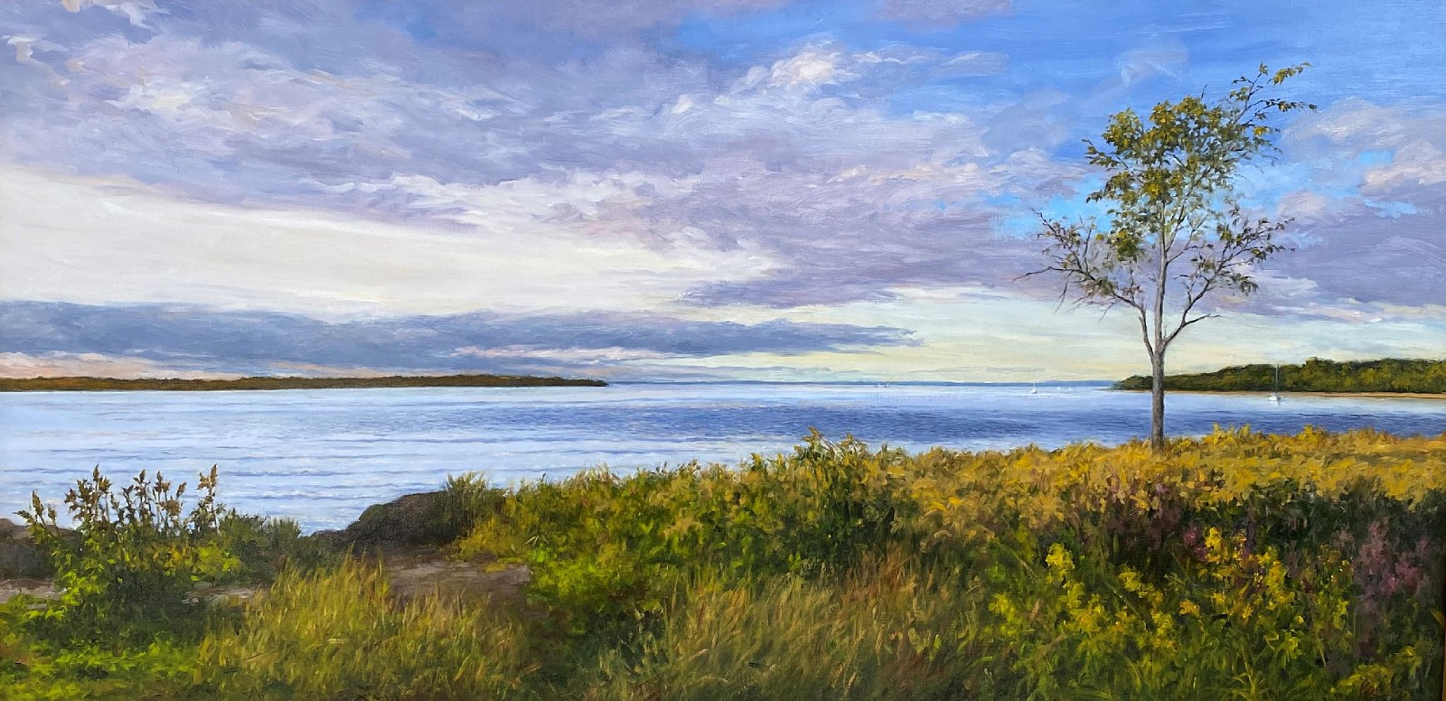 David Peikon ,   Fall View of the Harbor  ,  2017     oil on canvas ,  24 x 48 in. (61 x 121.9 cm)     DP191102